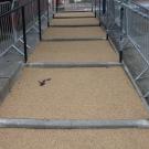 Sheffield walkway area